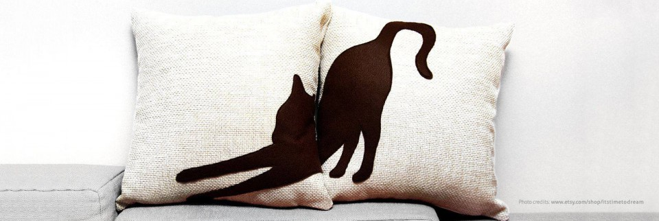 Canapeaua cu pisici